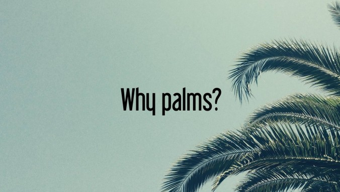 Why palms?